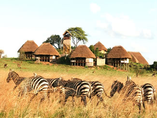 apoka-lodge-kidepo-instinct-safaris-northern-uganda12